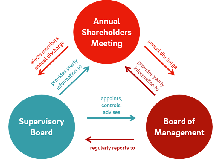 corporate governance flowchart